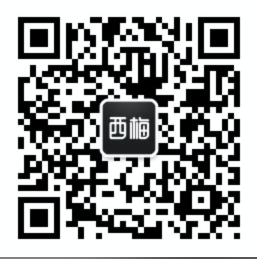 Seemore WeChat group, chatting in English西梅社群,等你来交流